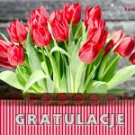 kartki-kwiaty-gratulacje-2144